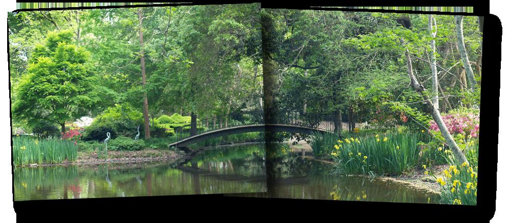 The New Southern View Ezine/Garden Gate - The Garden of Mynelle Hayward